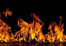Burning Fats, Fueling Flames – Parashat Tzav