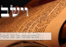 Parasha Vayeshev – G-d is in control not you!