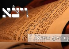 Parashat Vayeitzei – Never give up, anything can be fixed
