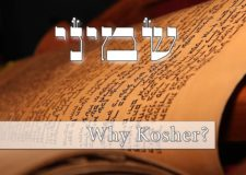 Parashat Shemini – What's the deal with Kosher animals??