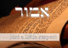 Parashat Emor – All it takes is a little respect