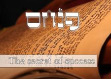 Parashat Pinchas – The most important Mitzvah