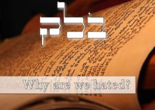 Parashat Balak – Why do the nations hate us Jews?