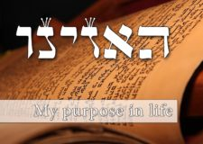 Ha'azinu – What's my purpose in life?