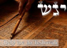 Parashat Vayigash – Help me do Teshuvah