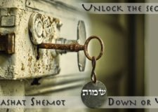 Parashat Shemot – Going down or up?