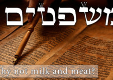 Parashat Mishpatim – Why don't we mix meat and dairy?