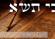 Parashat Ki Tisa – What good is a golden calf?