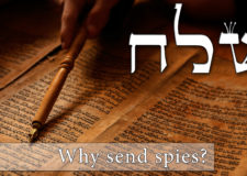 Parashat Shelach – Why send spies?