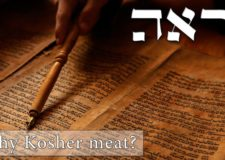 Parashat Re'eh – Eat and stay human