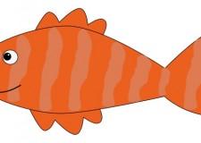 A Fish's Tale
