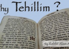Women, Tehillim, King David and Rosh Chodesh – what's the connection?