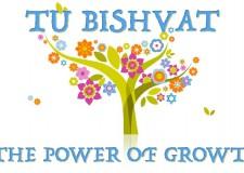 The power of growth – Tu Bishvat