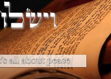 Parashat Vayishlach – It's all about peace
