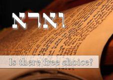 Parashat Va'eira – Is there free choice?