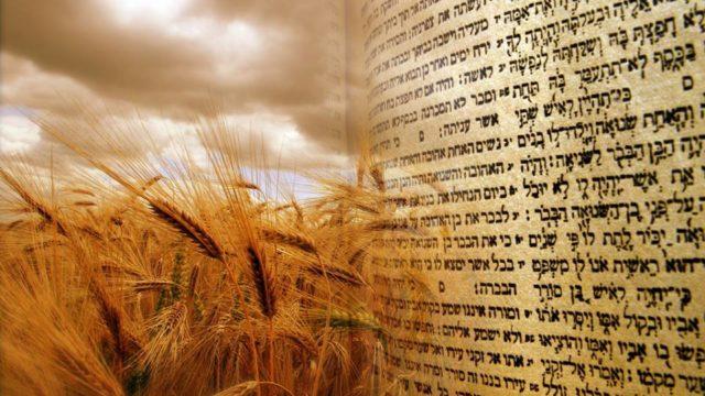 Kabbalah explains how to prepare for Shavuot to receive the Torah again