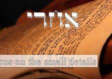 Parashat Acharei – Focus on the small details