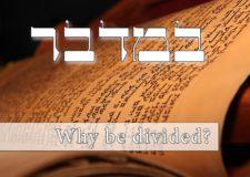 Parashat Bamidbar – Why are Jews divided?