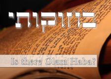 Parashat Bechukotai – is there a world to come (Olam Habah)?