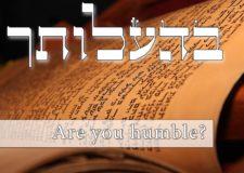 Parashat Behaalotecha – Why should I be humble?