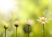 The hidden secrets of Kabbalah behind your spiritual growth