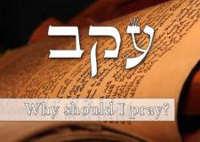Parashat Ekev – Why do we need to pray?