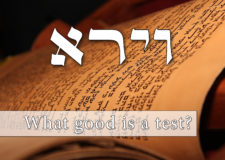 Parashat Vayeira – why is G-d testing us?
