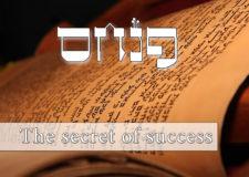 Parashat Pinchas – The secret to success