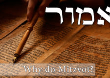 Parashat Emor – How does G-d do Mitzvot?