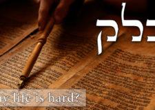 Parashat Balak – The power of names