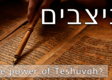 Parashat Nitzavim – What's so special about your Teshuvah?